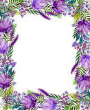 Floral frame with wildflowers Royalty Free Stock Photo