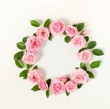 Floral frame wreath of pale pink roses flower buds and leaves on white background. Flat lay, top view mockup Royalty Free Stock Photos