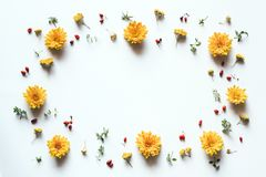 Frame With Yellow Flowers On White Background Stock Images