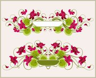 Floral frames. Beautiful vector illustration Royalty Free Stock Images