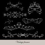 Floral  frames Stock Image