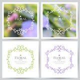 Floral frames Royalty Free Stock Photography