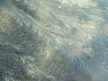 Floral Frost Pattern in Early Sunlight Background Stock Photos