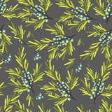 Floral, fruit and berry colorful seamless pattern Stock Images