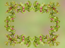 Floral garland - green orchid Stock Photos