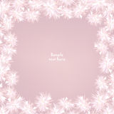 Floral gentle background with copy space. Flower frame. Stock Photos