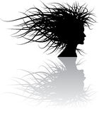 Floral girl silhouette Royalty Free Stock Photography