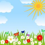 Floral glade, blue sky and sun Stock Image