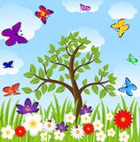 Floral glade, tree and bright butterflies Stock Photos