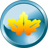 Floral glass button Royalty Free Stock Image