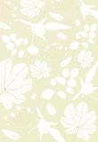 Floral gold background Stock Photos