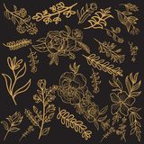 Floral Gold Vector Design vector illustration