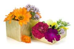 Floral golden gift concept Royalty Free Stock Photos