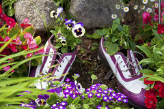 Floral Golfing Shoes Royalty Free Stock Image