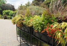 Floral Graden Stock Images