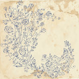 Floral graphic element on the paper Stock Photos