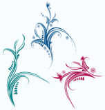 Floral graphic elements. Set of floral elements vector Royalty Free Stock Photo