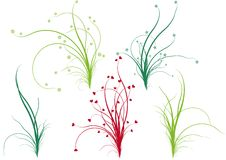 Floral grass,  Royalty Free Stock Photography