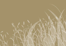 Floral grass background Royalty Free Stock Photo