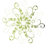 Floral green. Lots of design lines - floral green Stock Photos
