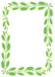 Floral green border. Stock Photos