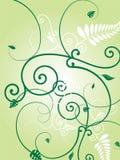 Floral green burst royalty free illustration