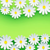 Floral green frame with 3d chamomile flower Royalty Free Stock Image