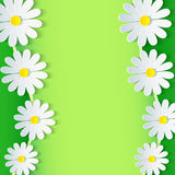 Floral green frame with 3d chamomile flower. Stylish floral beautiful background. Abstract beautiful spring or summer background with sheet of paper - place Royalty Free Stock Photos