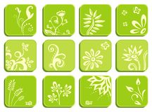 Floral Green Icons Royalty Free Stock Photo
