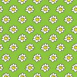 Floral green meadow seamless chamomile drawing. vector illustration. White daisies seamless pattern on a bright background. stock illustration