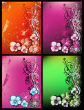 Floral greeting card. Set for text Royalty Free Stock Photography