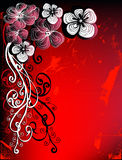 Floral greeting card. Design on red background for text Royalty Free Stock Photos