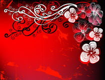 Floral greeting card. Desing on red background for text Royalty Free Stock Images