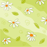 Floral greeting card Stock Photography