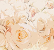 Floral greeting card with  beige roses Stock Photography