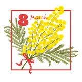 Floral Greeting card. 8 March international Women Day. Mimosa flower holiday background. Vector illustration Stock Photography