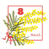 Floral Greeting card. 8 March international Women Day. Mimosa flower holiday background. Vector illustration Stock Photo