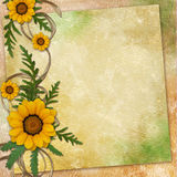 Floral greeting card with place for your text. Stock Photo