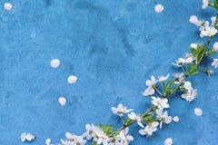 floral grunge ανασκόπησης Στοκ Εικόνες