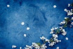floral grunge ανασκόπησης Στοκ Εικόνα