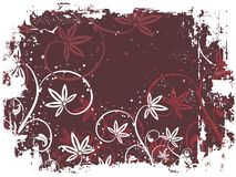 Floral grunge Royalty Free Stock Images
