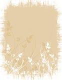 Floral grunge Stock Photos