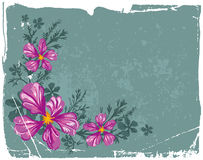 Floral grunge background Royalty Free Stock Image