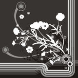 Floral grunge background. Floral grunge  background in black, gray and white colors Royalty Free Stock Image