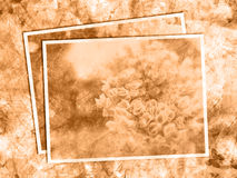 Floral grunge background. In beige tones Stock Photography