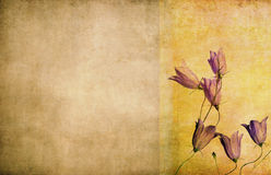 Floral grunge background and design element. With earthy texture Stock Photos