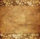 Floral grunge frame Stock Image