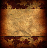 Floral grunge frame with autumn foliage on old parchment .old pa Royalty Free Stock Images