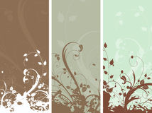 Floral grunge panels Royalty Free Stock Photos