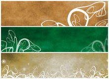 Floral Grungy Headers Royalty Free Stock Photo